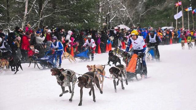 3 pojmy, které by měl znát každý vyznavač zimních sportů