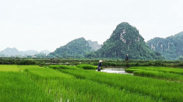 """Prečo bol pre nás Vietnam doteraz """"najtragickejšou"""" krajinou?"""