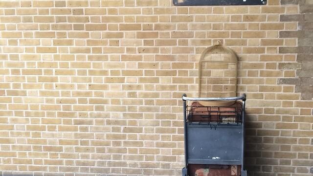 12 věcí, které má společné fanfikce Harryho Pottera a Strip Bar v centru Prahy