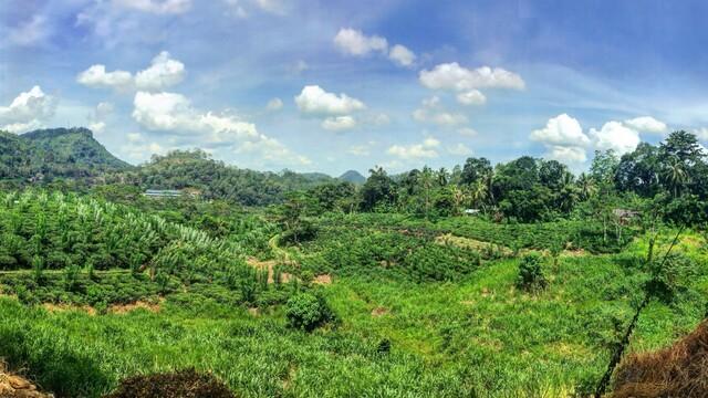 Mesačný trip po Srí Lanke