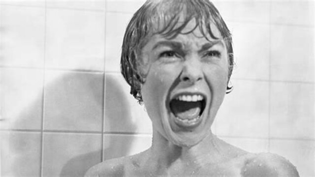 The Cinematography of the Shower scene in Psycho