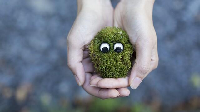 13 způsobů, jak pomoci životnímu prostředí
