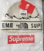 Supreme x TNF Fold Beanie White