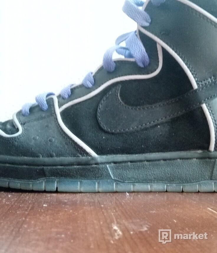 Nike dunk high pro