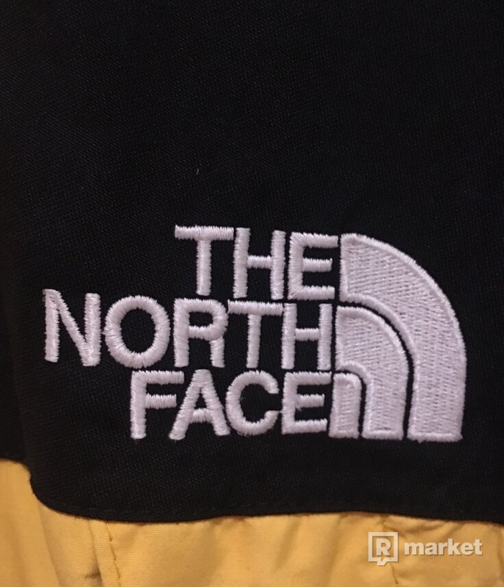 The North Face Goretex Mountain Jacket
