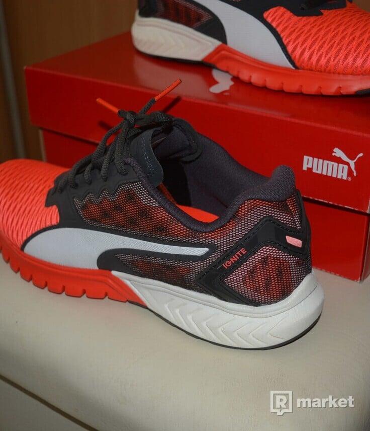 puma – ignite dual uk6