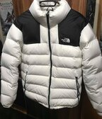 The North Face Nuptse 700 puffer