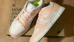 Nike Dunk Low Move To Zero Pale Coral (W) 40.5