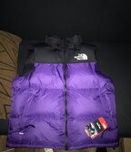 North face vesticka