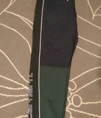 Carhartt Terrace pants
