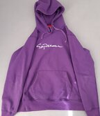 Supreme script logo hoodie