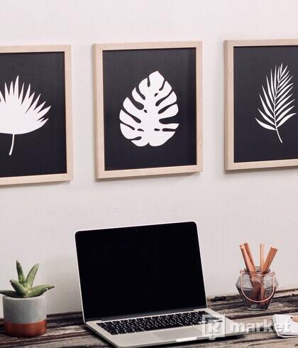 Set obrazov - Tropické listy - white