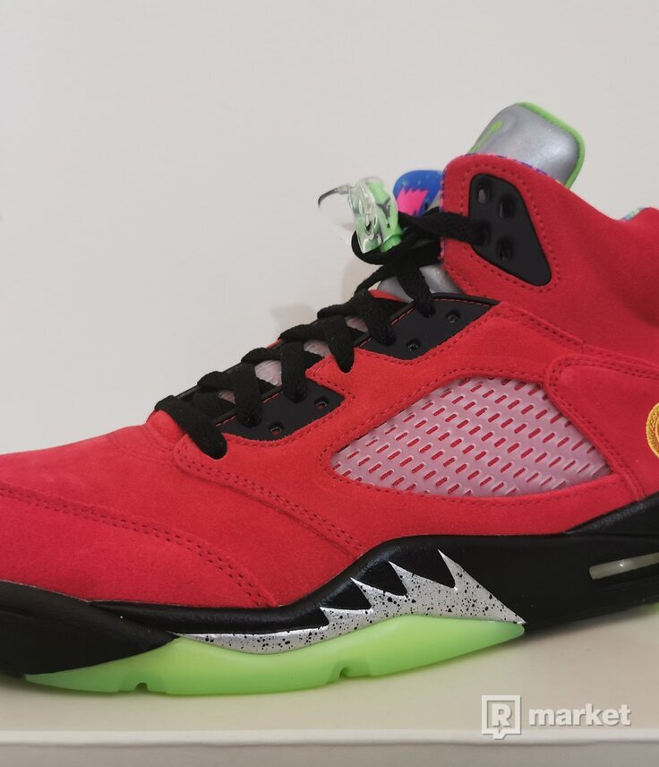 Air Jordan 5 Retro SE