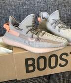Adidas YEEZY BOOST 350 V2 true form 43/13-44