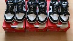 Nike Dunk Low White Black (W)