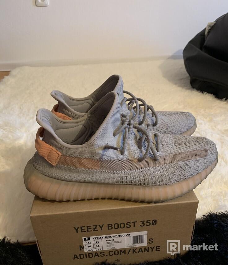 Adidas yeezy Boost 350 true form