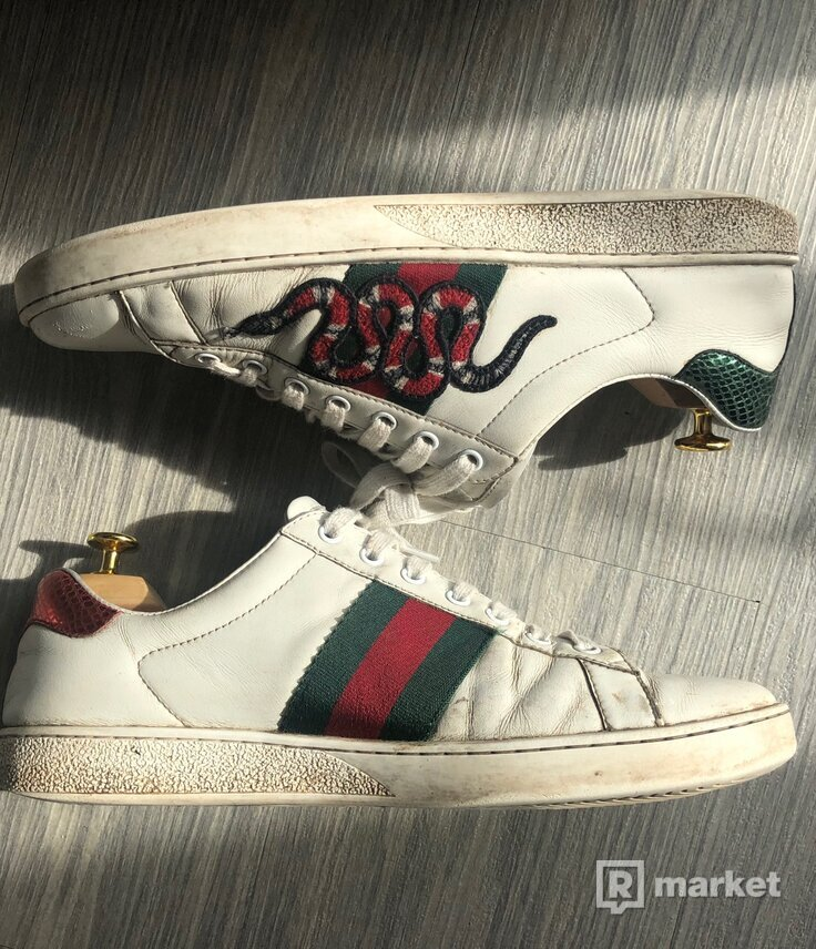 Gucci ace snake