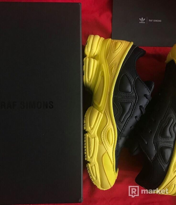 Adidas x Raf Simons Ozweego