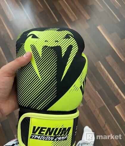 Venum training camp gloves