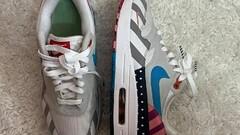 Nike Air Max 1 Parra (2018)