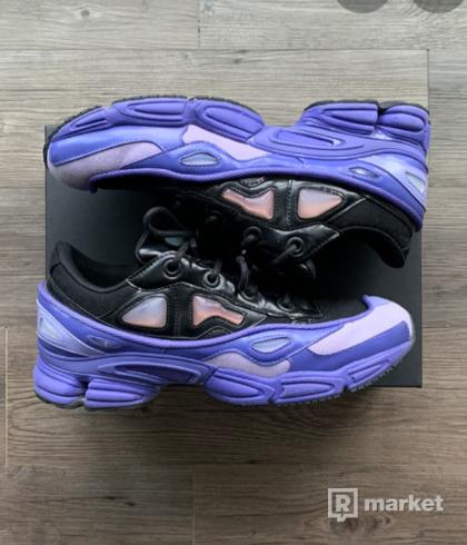 Raf Simons ozwego 3 purple